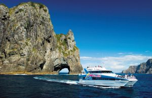 Bay of Islands Cruise