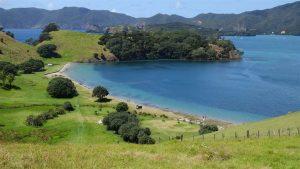 Urupukapuka Island Bay of Islands