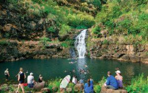 Swim under a waterfall in Waimea Valley