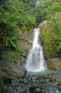 Waterfalls in El Yunque La Mina