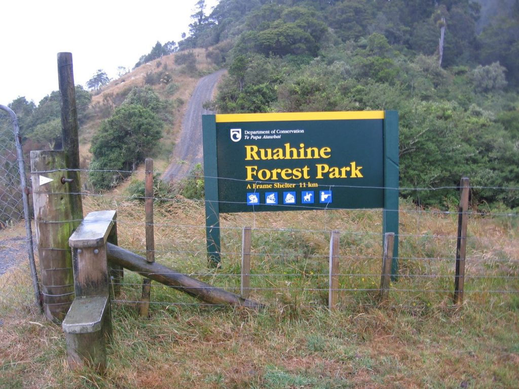 Ruahine Forest Park in North Island NZ