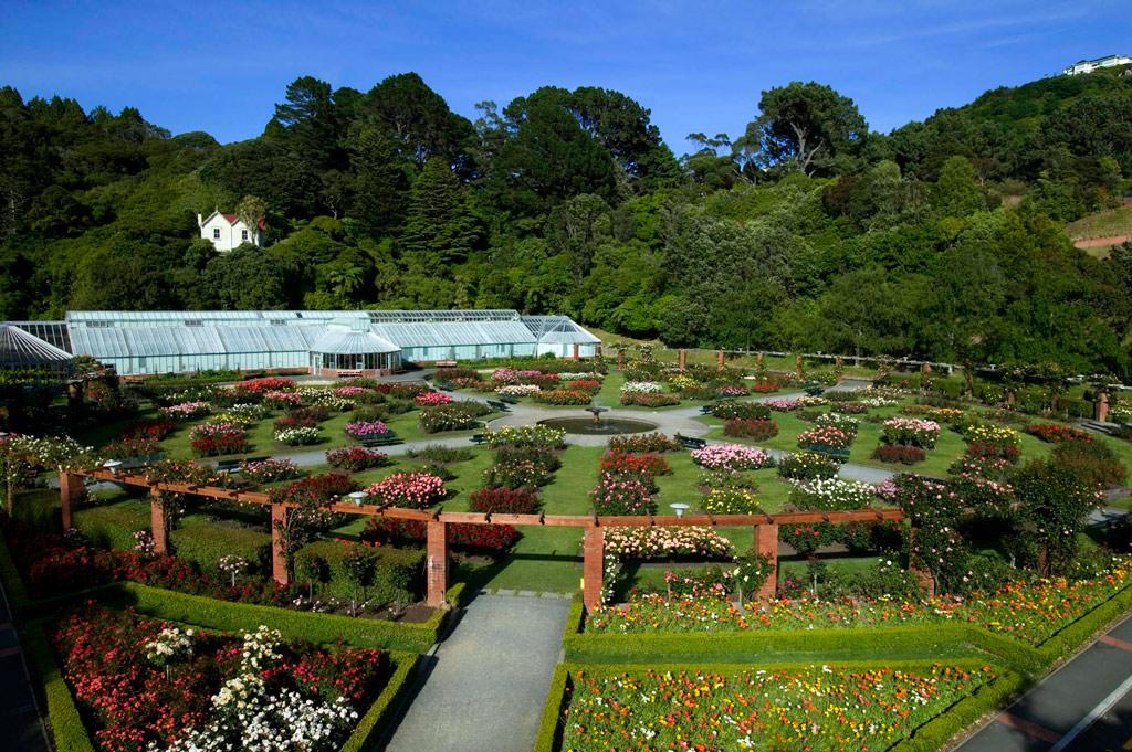 Travel to Wellington NZ