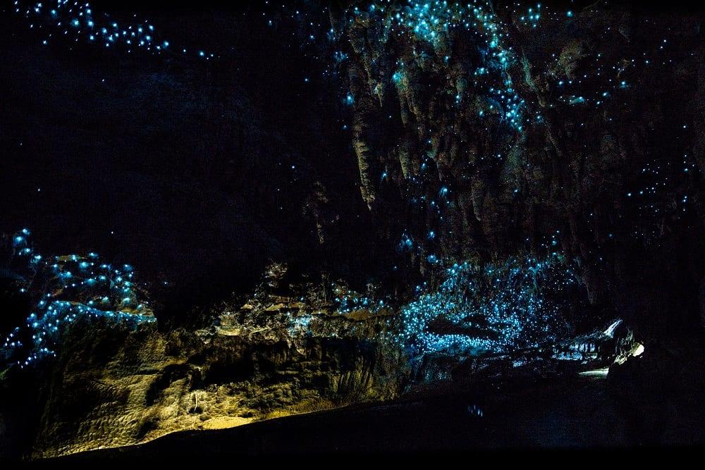 Waitomo Glowworm Caves in North Island