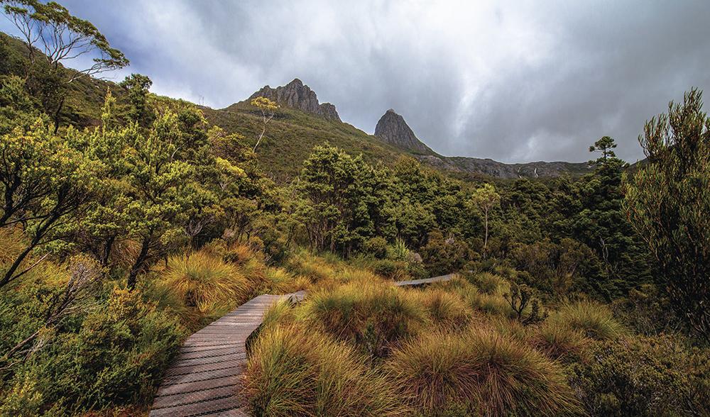 Travel around Tasmania summer bucket list