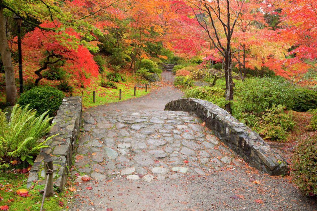 Visit Washington Park Arboretum in Seattle