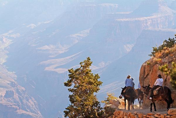 horse riding Grand Canyon National Park, Arizona Summer Bucket List