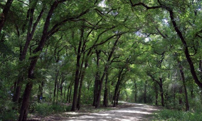 Mayfield Park Austin TX