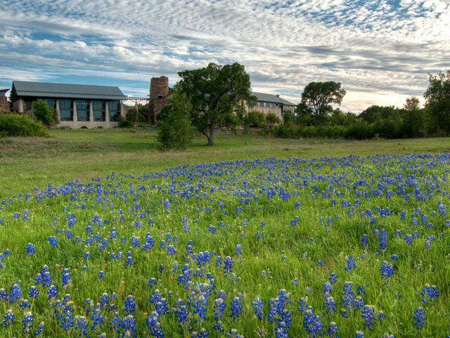 Lady Bird Johnson Wildflower Center Austin