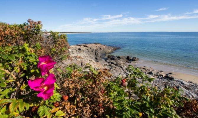 Best Beaches on the East Coast Ogunquit Beach, Maine