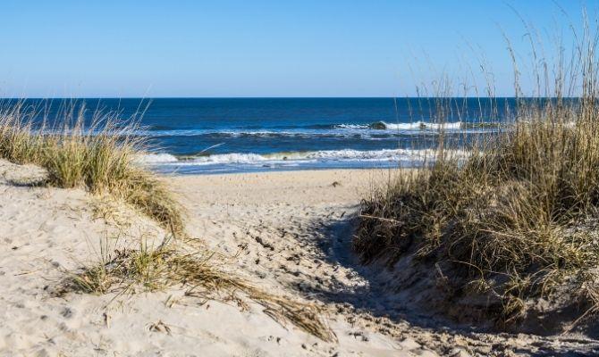 Beaches in Virginia Sandbridge Beach