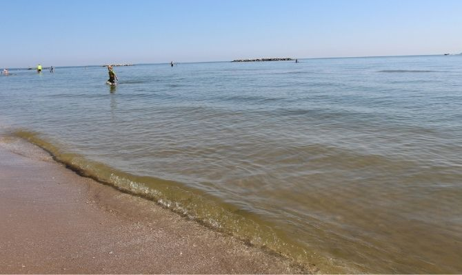 Maumee Bay State Park Beach, Lucas County